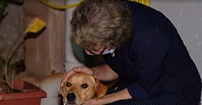 Ruth ficou longe do seu cachorro por quase dois anos.
