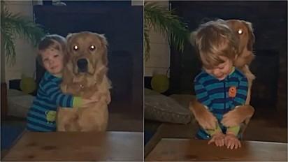 Golden retriever retribui abraço de criança.