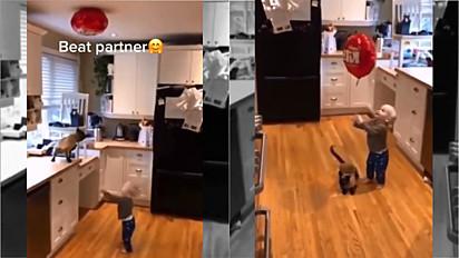 Gato resgata balão hélio para criança.