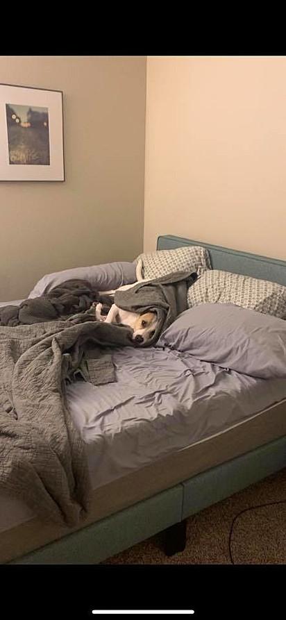 Você pode ir trabalhar, mãe. Acho que vou ficar aqui.