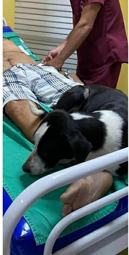 O cachorrinho esteve por perto do seu dono em todos os momentos.