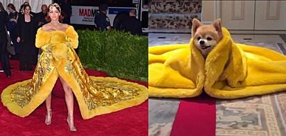 Cobertor idêntico a roupa da cantora Rihanna.