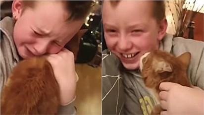 Menino tem reencontro emocionante com seu gato desaparecido por 7 meses.