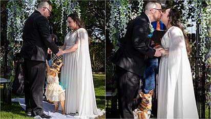 Cachorrinha conduz noiva junto do seu pai até o altar.