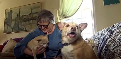 Ellen Eikamp com os seus cães Dobby e Frodo.