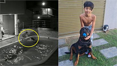 Menino salva cão rottweiler de 70 kg que caiu em piscina: É um amigão para mim.