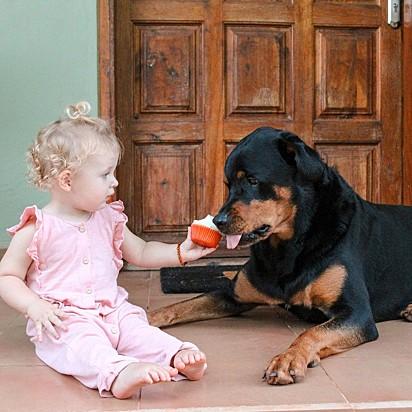 Gia, aprendeu compartilhar a sua comida com a Zara.