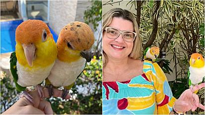 Giselli Almeida está a frente do projeto Kriandokalô, que visa informar outros tutores de aves como oferecer melhor qualidade de vida para seus pets.
