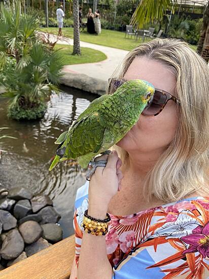 Giselli encontrou conforto nas aves.