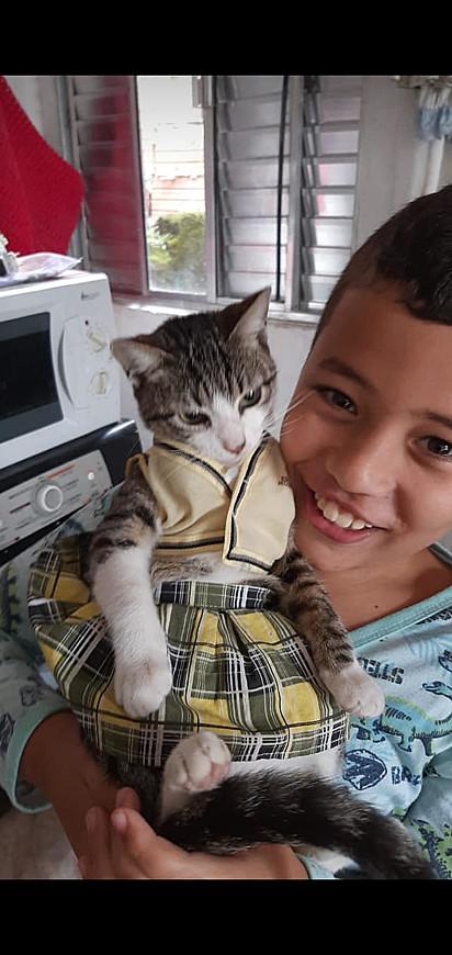 Um encanto que ficou o gatinho Rodolfo.