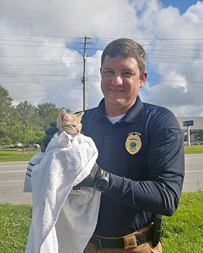 O gatinho depois do resgate foi encaminhado a um abrigo de animais.