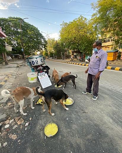 O indiano tem grande amor pelos animais.