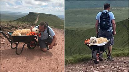 Homem faz última aventura com o seu cachorro labradoodle enfermo.