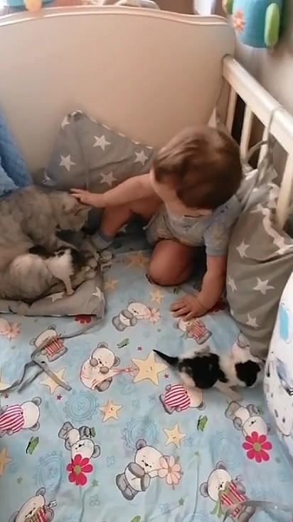 O bebê foi muito carinhoso.