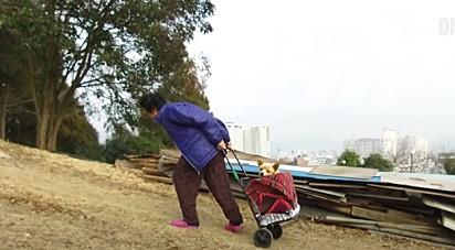 Com a ajuda do seu carrinho, a idosa transportou o cachorro para casa.