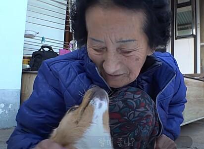 A idosa criou um grande laço de amor com o peludinho.