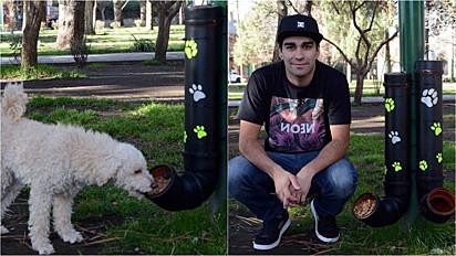 Jovem espalha comedouros e bebedouros para cães de rua em Junín de los Andes, Argentina.