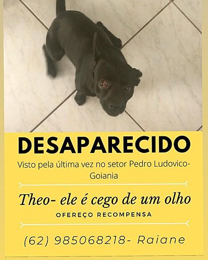 Anúncio do desaparecimento de Theo que Raiane publicou nas redes sociais.