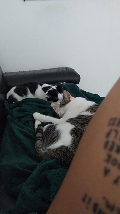 Eu só fico com a pontinha do sofá hahahaha.