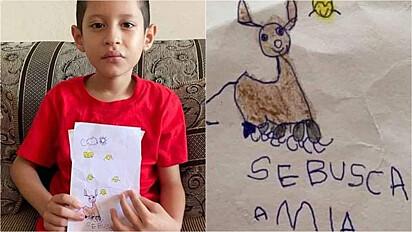 Criança retrata a sua cadelinha desaparecida e implora por ajuda de internautas para encontrá-la.