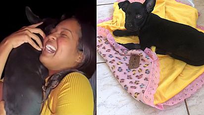 Jovem faz promessa e vai aos prantos ao reencontrar cachorro desaparecido há um mês.