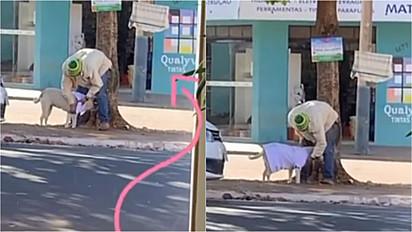 Catador de reciclável escolhe roupa em varal solidário para vestir o seu cachorro e protegê-lo do frio.