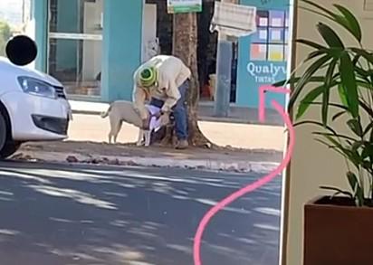 Um catador de recicláveis escolheu uma roupa no varal solidário para vestir o seu cachorro.