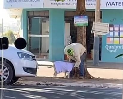 Delicadamente o homem vestiu o cachorrinho.