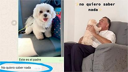 Pai que não queria cachorro agora não para de mimá-lo.