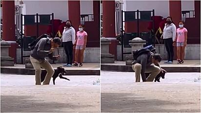 Homem é flagrado dançando com o seu cachorro pelas ruas da sua cidade.