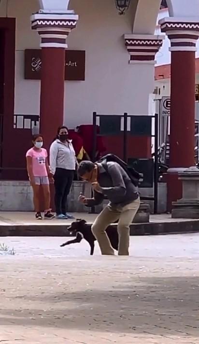 O cachorrinho dançando alegremente ao lado do seu dono.