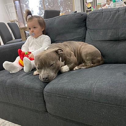 Brick com a sua irmã humana Amiyah.