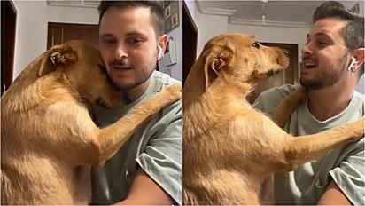 Cachorra abraça dona na tentativa de impedi-lo de sair.