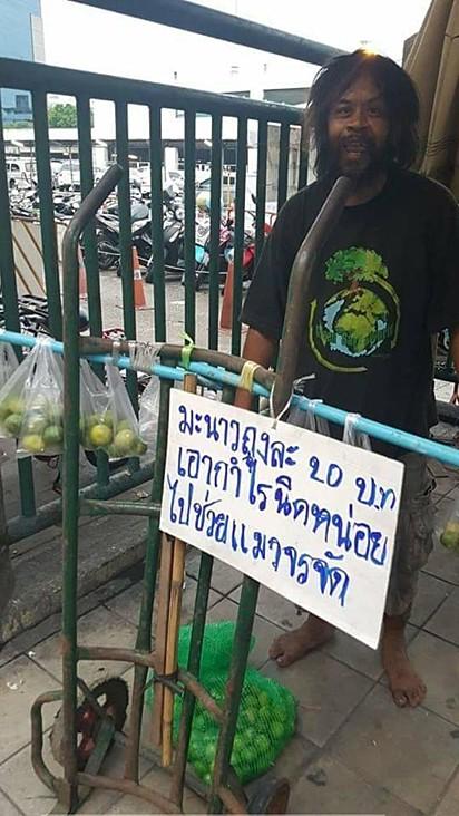 Loong Dum vende limão para garantir alimento para gatos.