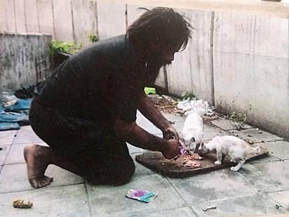Ele alimenta primeiro os gatos e depois a si.