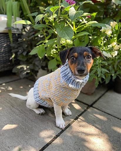 O jovem passou a tricotar no ano passado.