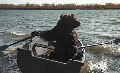 Archie numa canoa.