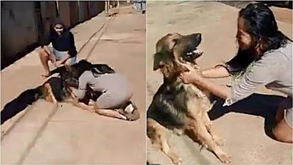 Mulher tem reencontro emocionante com o seu cachorro desaparecido há 33 dias.