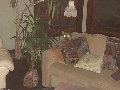 O puma ficou escondido atrás do sofá.