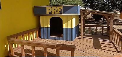 Casinha construída com madeira ilegal apreendida pela PRF.