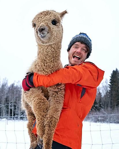 Abrace uma nuvem feliz: Lista de balde. Você pode ser voluntário em fazendas de alpaca em todo o mundo.