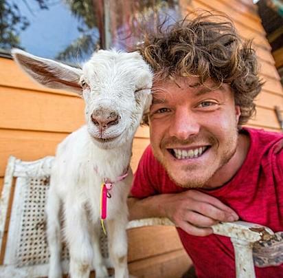 Verificado, acho que a cabra gosta de você.
