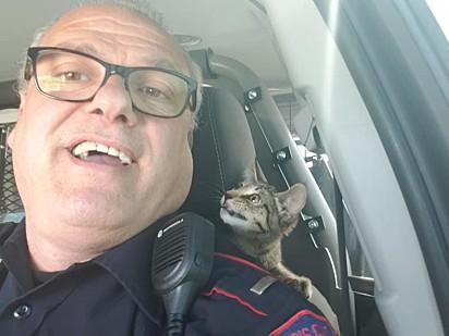 O policial aproveitou para tirar algumas fotos com o gatinho.