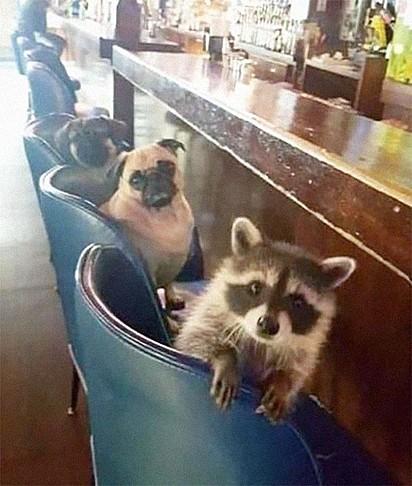 Eu com os meus amigos depois da pandemia.