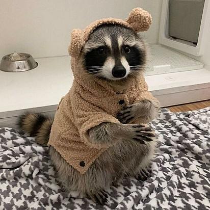 Preparada para o frio.