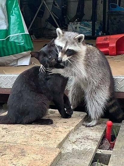 Quando você adora abraçar alguém.