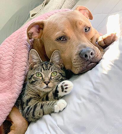 Melhor lugar é dentro de um abraço.