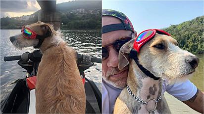 Cachorro é adotado e desde então participa da rotina de aventuras do seu tutor.
