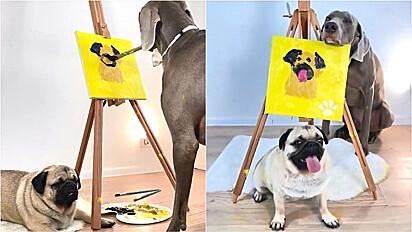 Cachorro da raça Weimaraner retrata pug em pintura de tela.