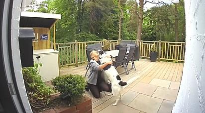 O cachorrinho ficou em êxtase quando viu a dona.